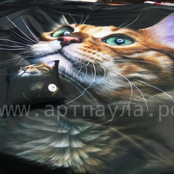 Фотошторы «Рыжий кот»