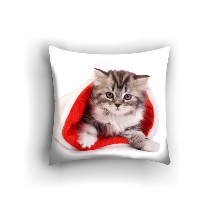 Фотоподушки «Котенок в колпаке»