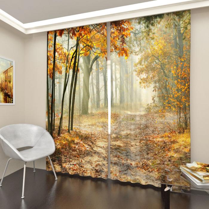 Фотошторы «Осенний лес»