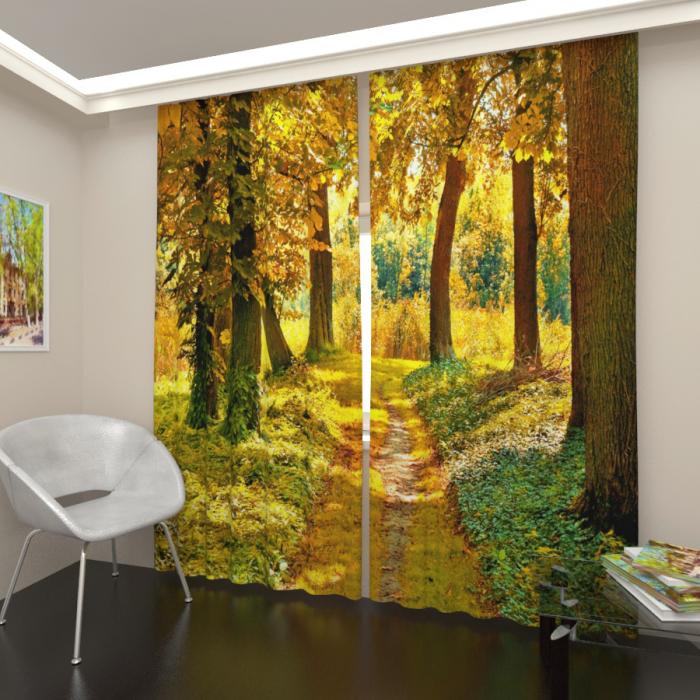 Фотошторы «Осенний лес 2»