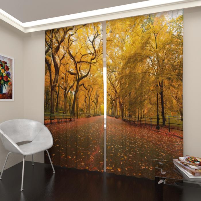 Фотошторы «Осенний парк 3»
