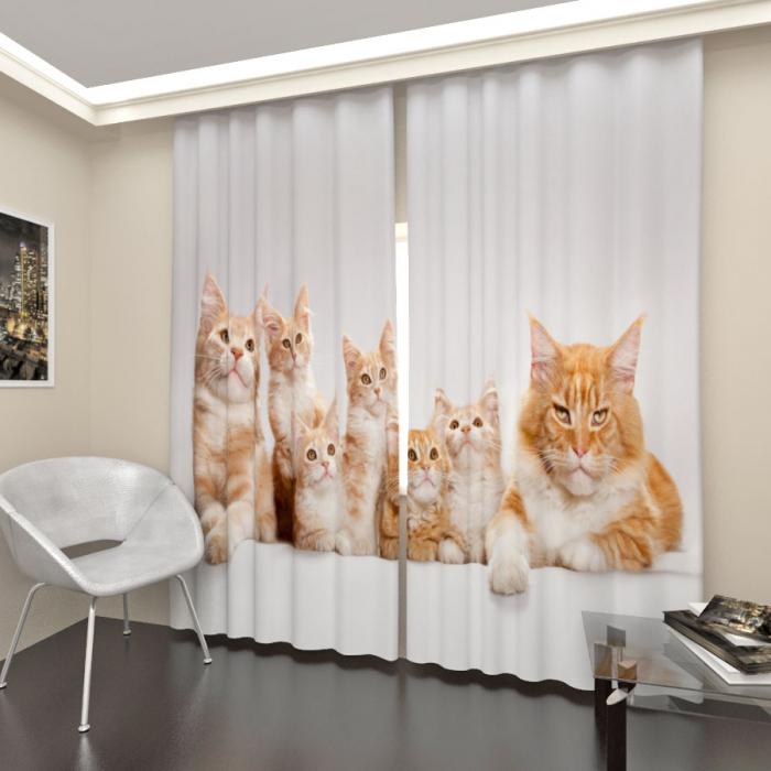 Фотошторы «Рыжие кошки»
