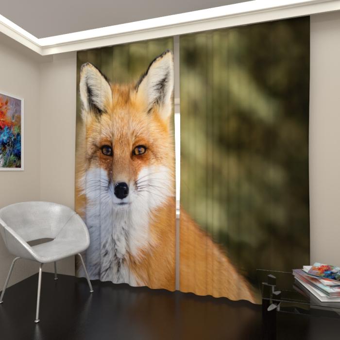Фотошторы «Рыжий лис»