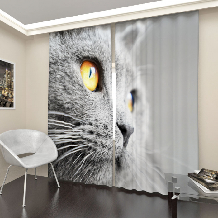 Фотошторы «Серый кот»