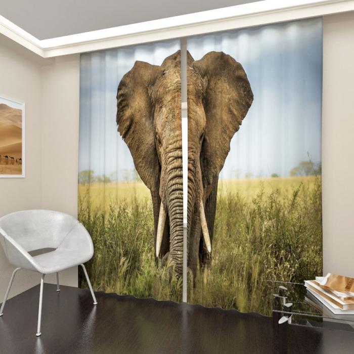 Фотошторы «Слон»