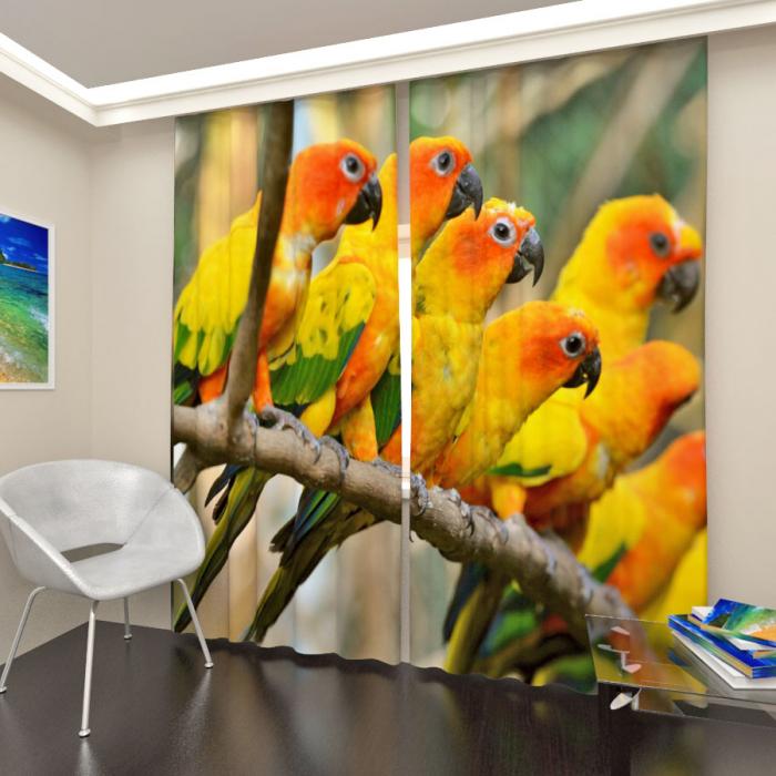 Фотошторы «Стая попугаев»