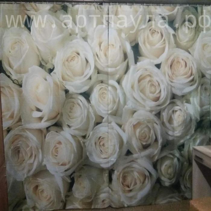 Фотошторы «Кремовые розы»